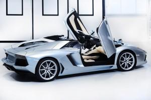 Lamborghini Aventador Roadster LP 700-4